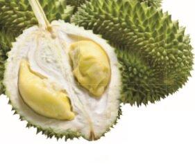 Owoc Duriana